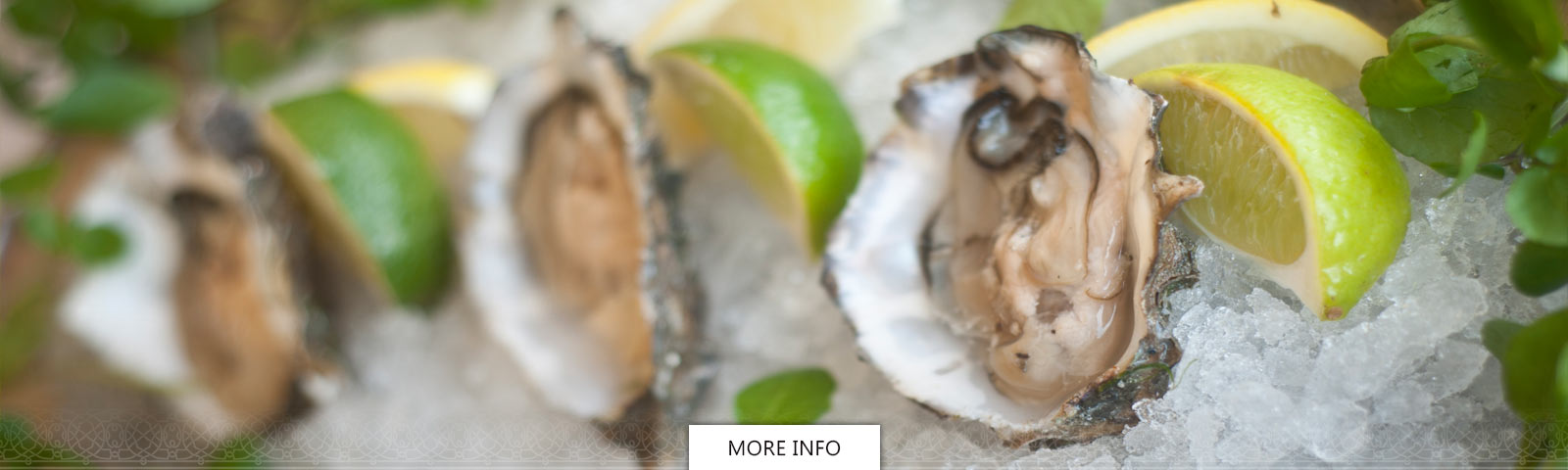 Oysters and fresh lime on a bed of crushed ice